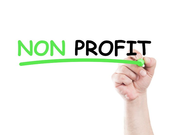 The importance of leadership in maintaining a non profit organization